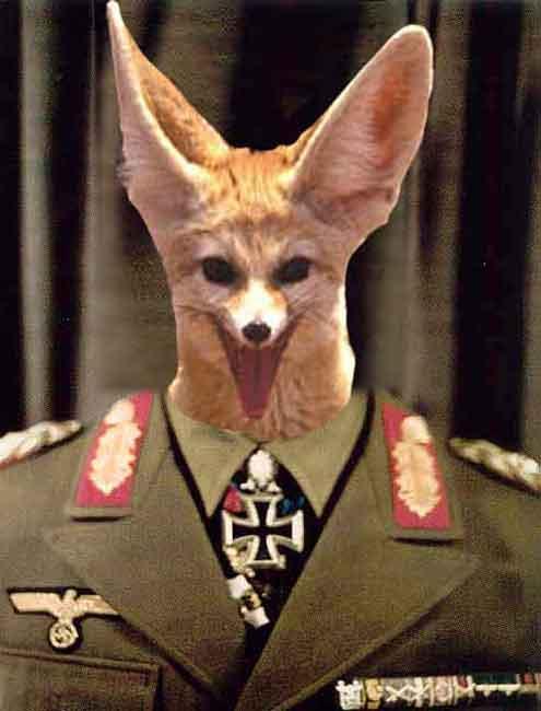 erwin-the-desert-fox