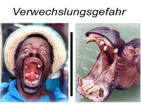 verwechslungsgefahr-nilpferd-hippo