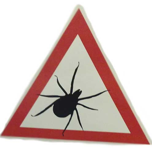 Achtung Zecken - Aktuelle Warnung für die Hauptstadt!