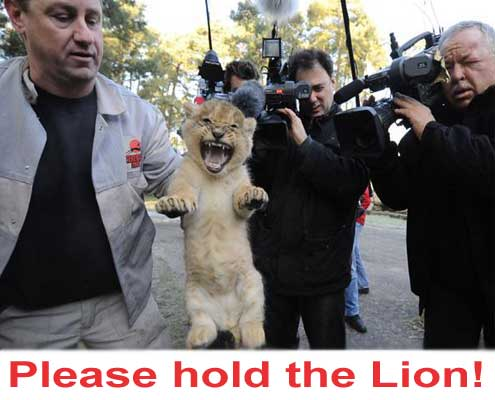 please-hold-the-lion