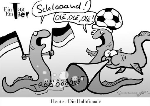 halbfinale-2012