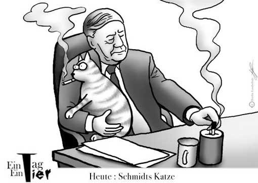 schmidts-katze