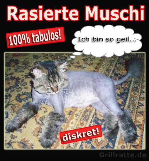 rasierte muschi Grillratte tabulos (1)