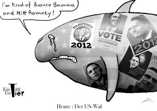 wal Der US Wal