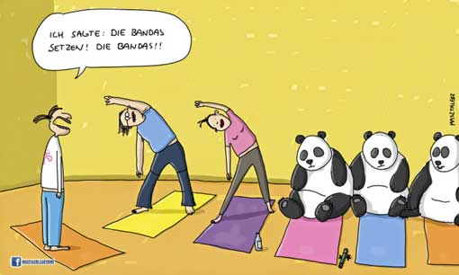 bandas-und-pandas