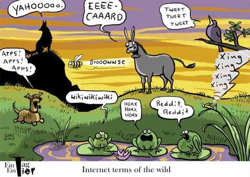 tiere-im-internet