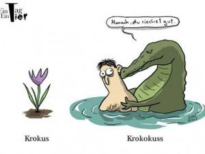 das-verliebte-krokodil