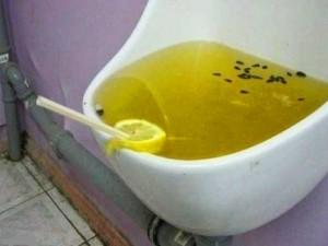 verstopftes-urinal