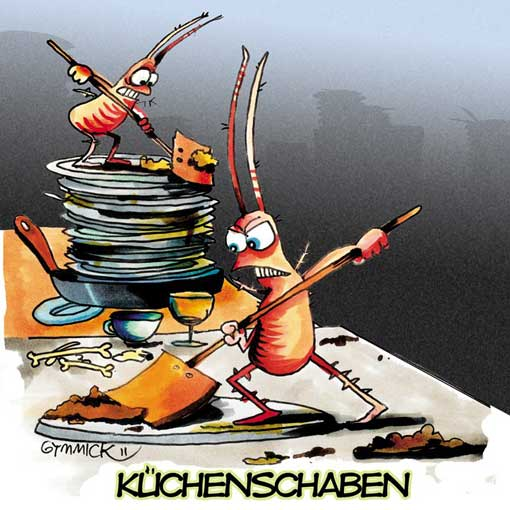 kuechenschaben
