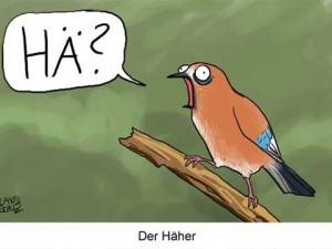 dorthe-landschulz-haeher