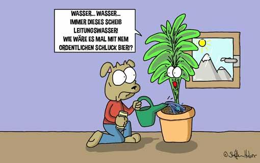 tierscherzgebiet-zimmerpflanze