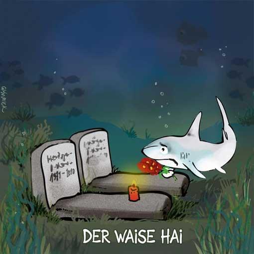 gymmick-der-waise-hai