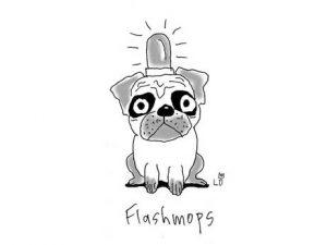 lo-graf-von-blickensdorf-der-flashmops