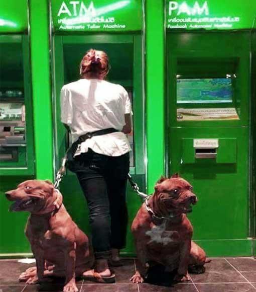 bankautomat-witzig