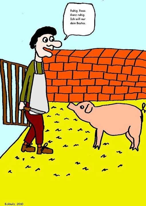 eckholz-das-schwein