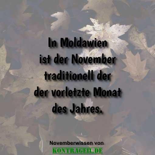 wissenswertes-ueber-den-november